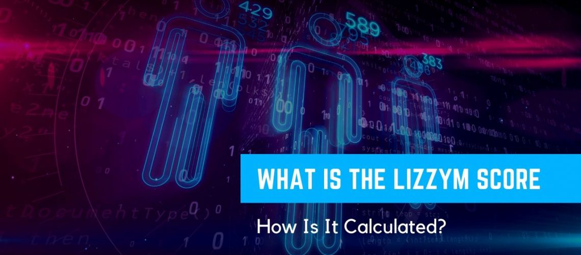 What Is The LizzyM Score and How Is It Calculated_